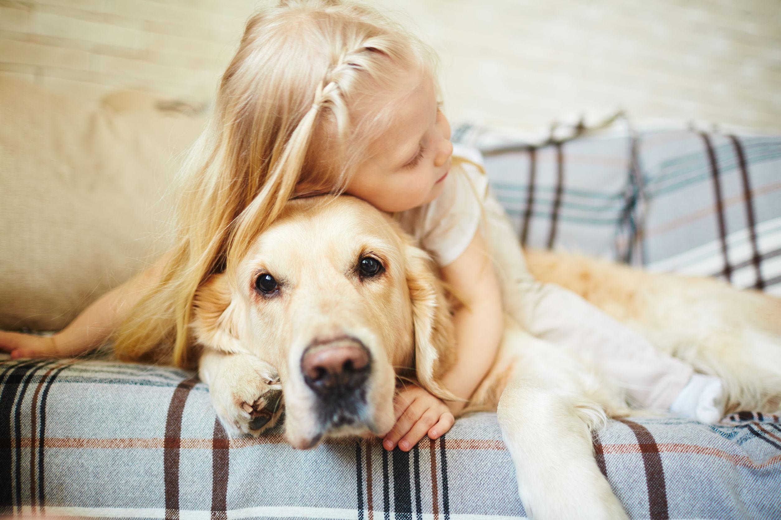 Rasy Psów Dla Dzieci Jakie Są Najlepsze łagodne Psy Maxandmraupl