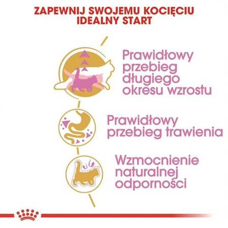 Royal Canin Maine Coon Kitten 4 kg